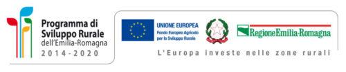 Programma di Sviluppo Rurale dell'Emilia Romagna PSR 2014/2020 7.4.01